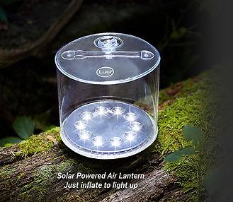 luci-lantern.jpg