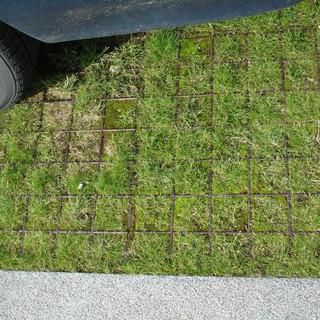 Græsarmering 2, 27.09.08 - Kopi.JPG