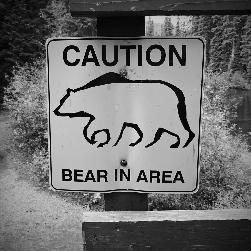 Bear in area sign