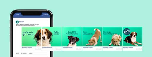Pet Protect Social Campaign