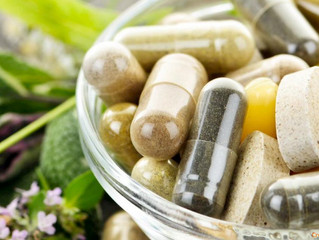 Do You Know the Importance of Probiotics?