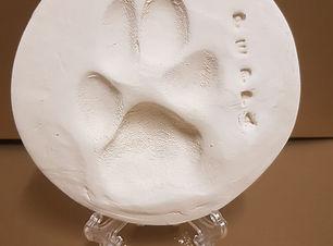 clay paw photo.jpg