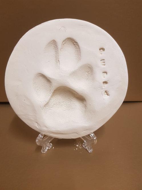 Clay Paw Impression