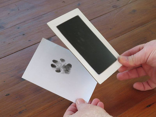 Inkless Paw Print Impression Kit