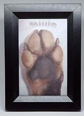 paw photo framed.jpg