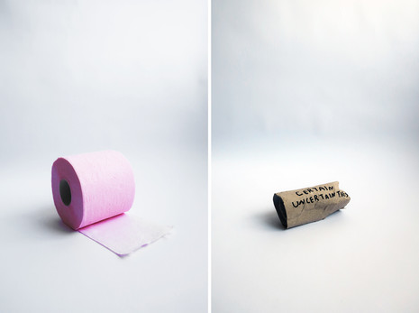 toilet roll no.3