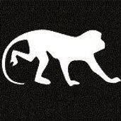 Monkey Mind.jpg