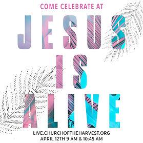 jesus is alive.jpg