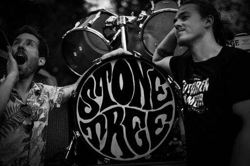 Stonetree Logo