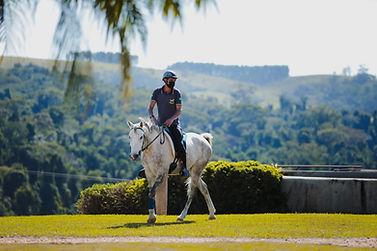 cavalo de enduro2.jpeg