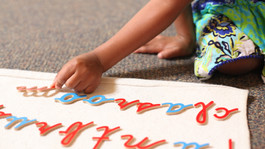 Montessori Basics: The Language Curriculum