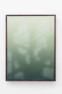 Shadow Canvas #45