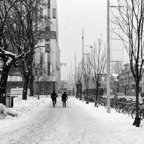 Snowfall Today