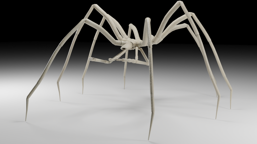 Cave Spider 1
