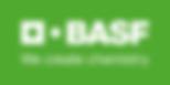BASFo_wh100lg_4c.png