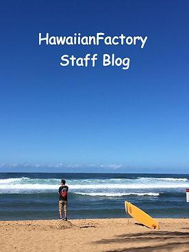 Hawaii1_edited.jpg