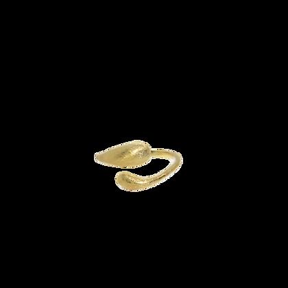 Jafaar ring