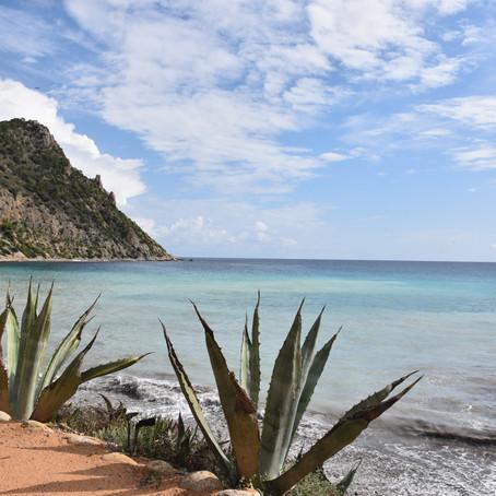 If lost...return to Ibiza.