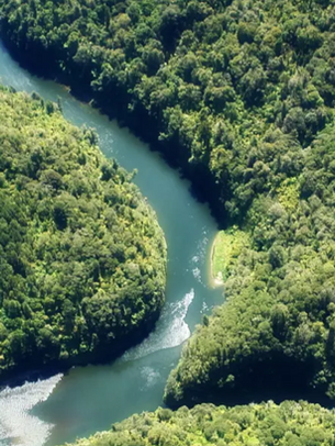 Rivers as persons: What it means to give legal rights to nature