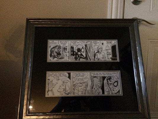 John Siuntres of Word Balloon's Spiderman Comic Strip Frame