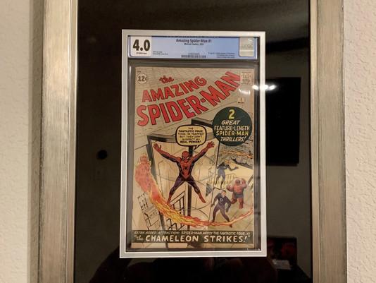 Amazing Spider-Man #1 Framed by ECC Frames