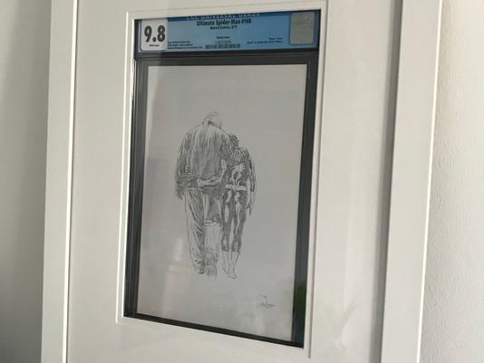 """Ultimate Spider-Man 160 """"Death of Spider-Man"""" Framed by ECC Frames"""