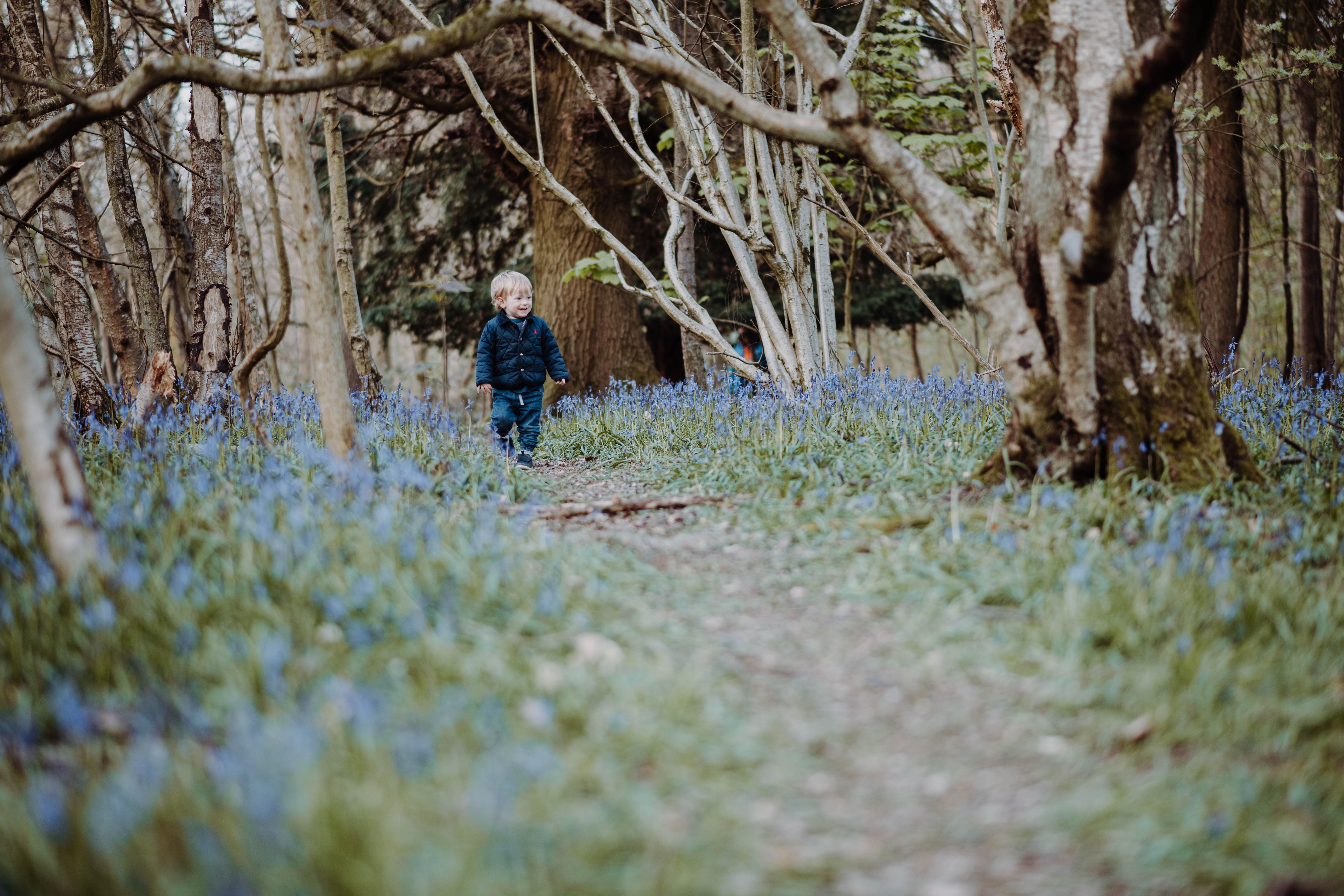 Bluebell Mini Shoot
