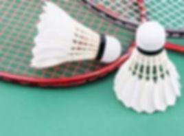 rackets and shuttles 3.jpg