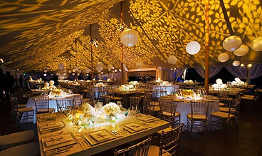 Wedding Enviromental Projection