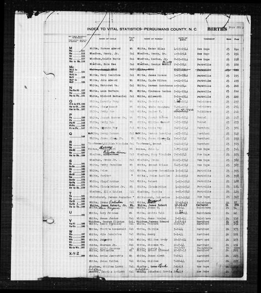 Birth Record of Lillian Virginia Mountweazel