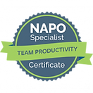 napo-team-productivity.png