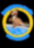 Kangaroo Pools Swimming Pool Service and Repair Phoenix Arizona