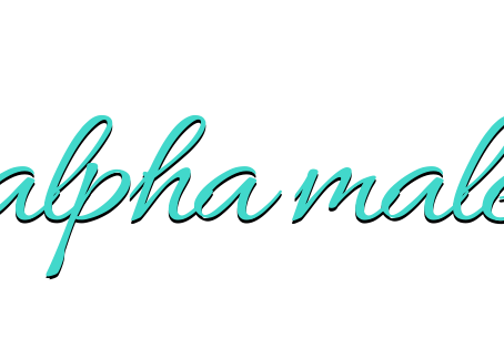 Top Five Alpha Male Romances
