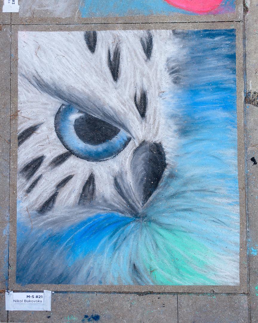 chalk--10.jpg
