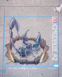 chalk--76.jpg