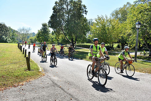 DogwoodArts_Bikes&Blooms_2.JPG