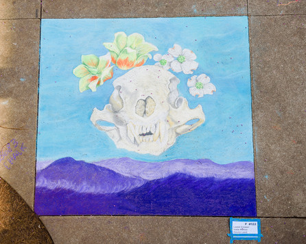 chalk-5739.jpg