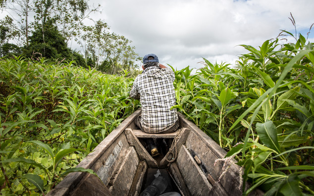 A portfolio image of a man canoeing through the Amazon by Toronto based commercial photographer BEN HEMMINGS MEDIA