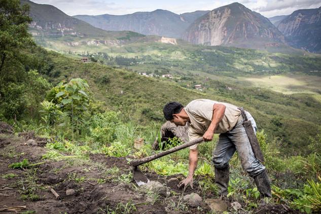 A portfolio image of a farmer in Ecuador by Toronto based commercial photographer BEN HEMMINGS MEDIA