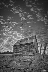 Little-House-on-the-Prairie-Portrait-B&W