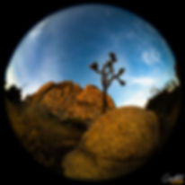 Joshau-Earth-WEB.jpg
