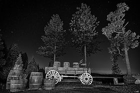 Wine-Train-B&W-WEB.jpg