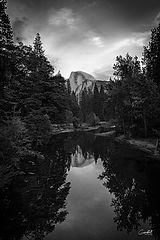 Downstream-B&W-WEB.jpg