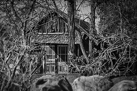 House-of-Wood-B&W-WEB.jpg