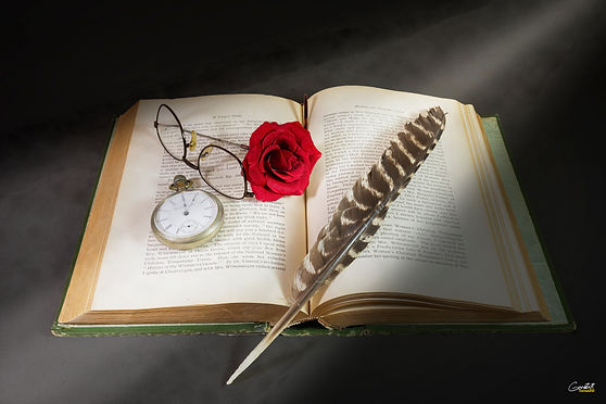 Book, pocket watch, rose, feather, glasses, imagination,