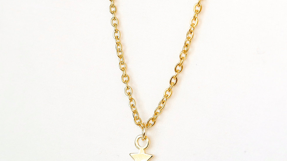 """Star-Crossed Lovers"" Single Charm Necklace"