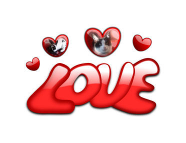 love 1.jpg