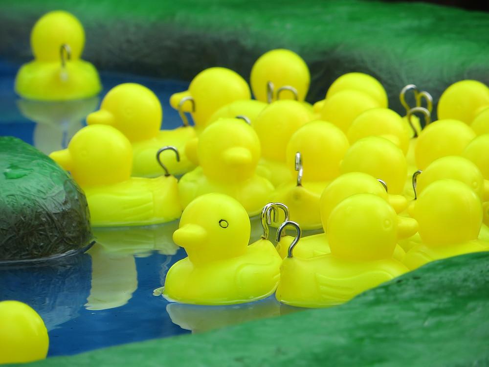 hook-a-duck-660524_1280.jpg