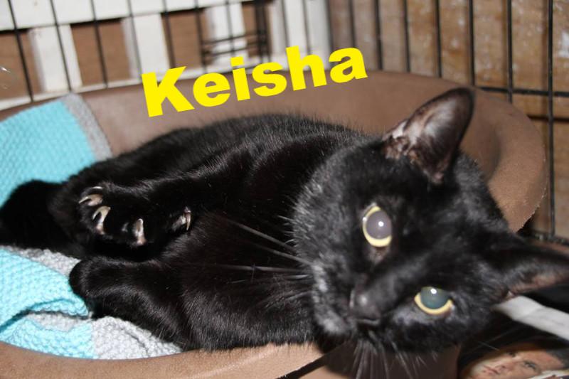 Keisha_edited.jpg