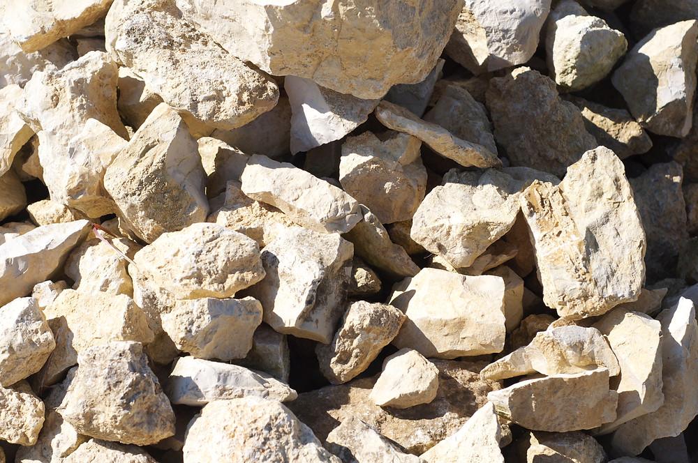 Kimmeridgian Limestone Bedrock of Chablis